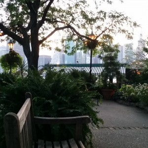 The Brooklyn Bridge Park
